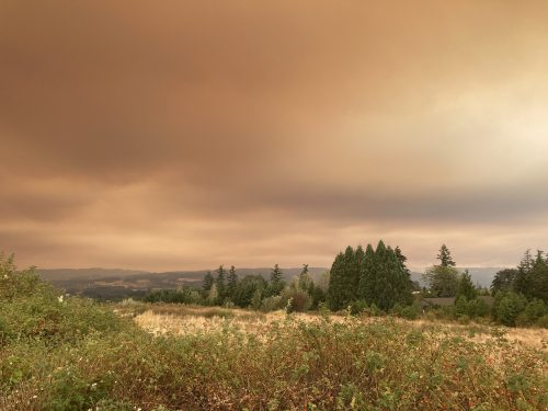 Wildfires, Winds, and Emergency Funds